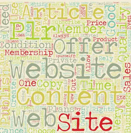 niche plr blogs