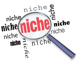 what is niche marketing