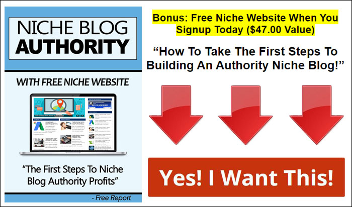 niche blog authority
