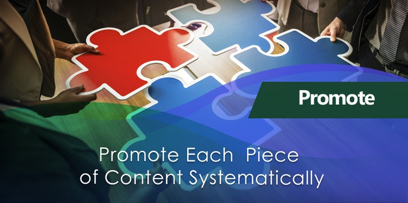 Promote Each Piece of Niche Content Systematically