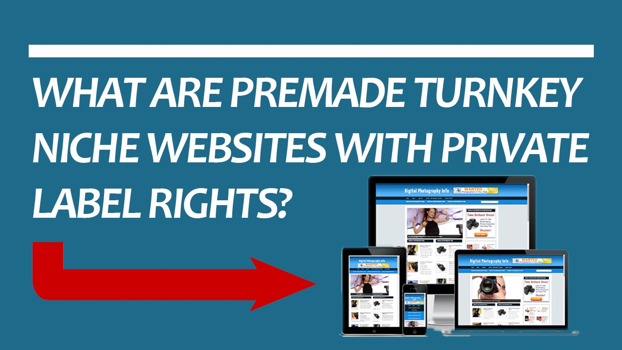 premade turnkey affiliate niche website