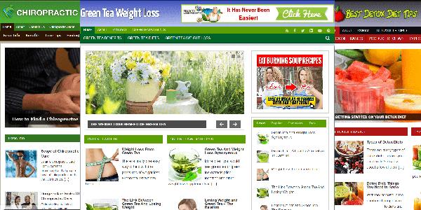 premade niche websites