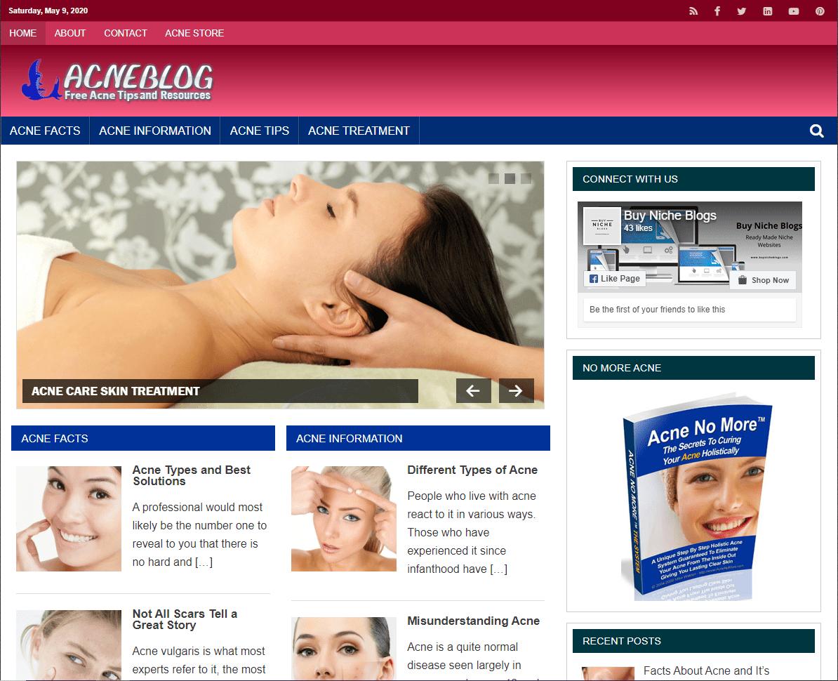 Acne PLR Niche Blog