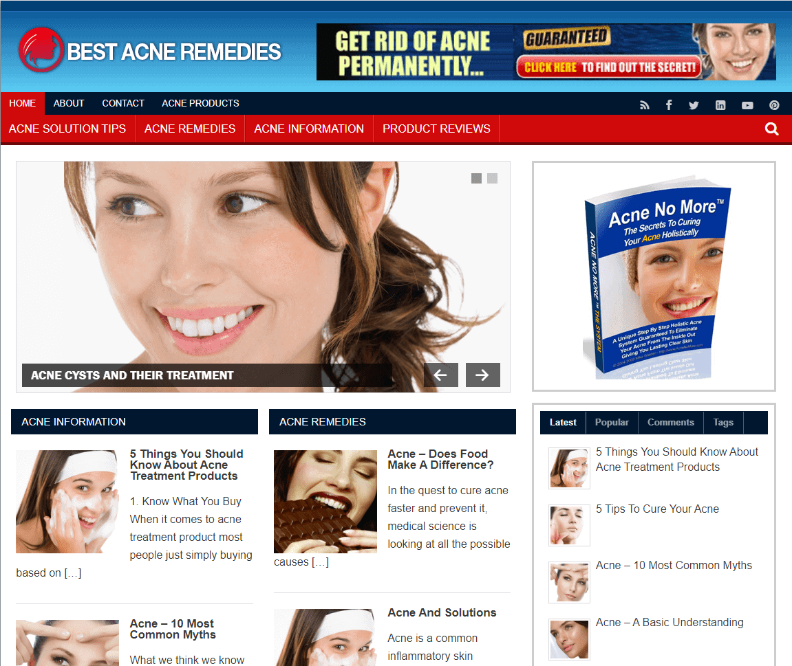 Acne Remedy Premium PLR Niche Blog