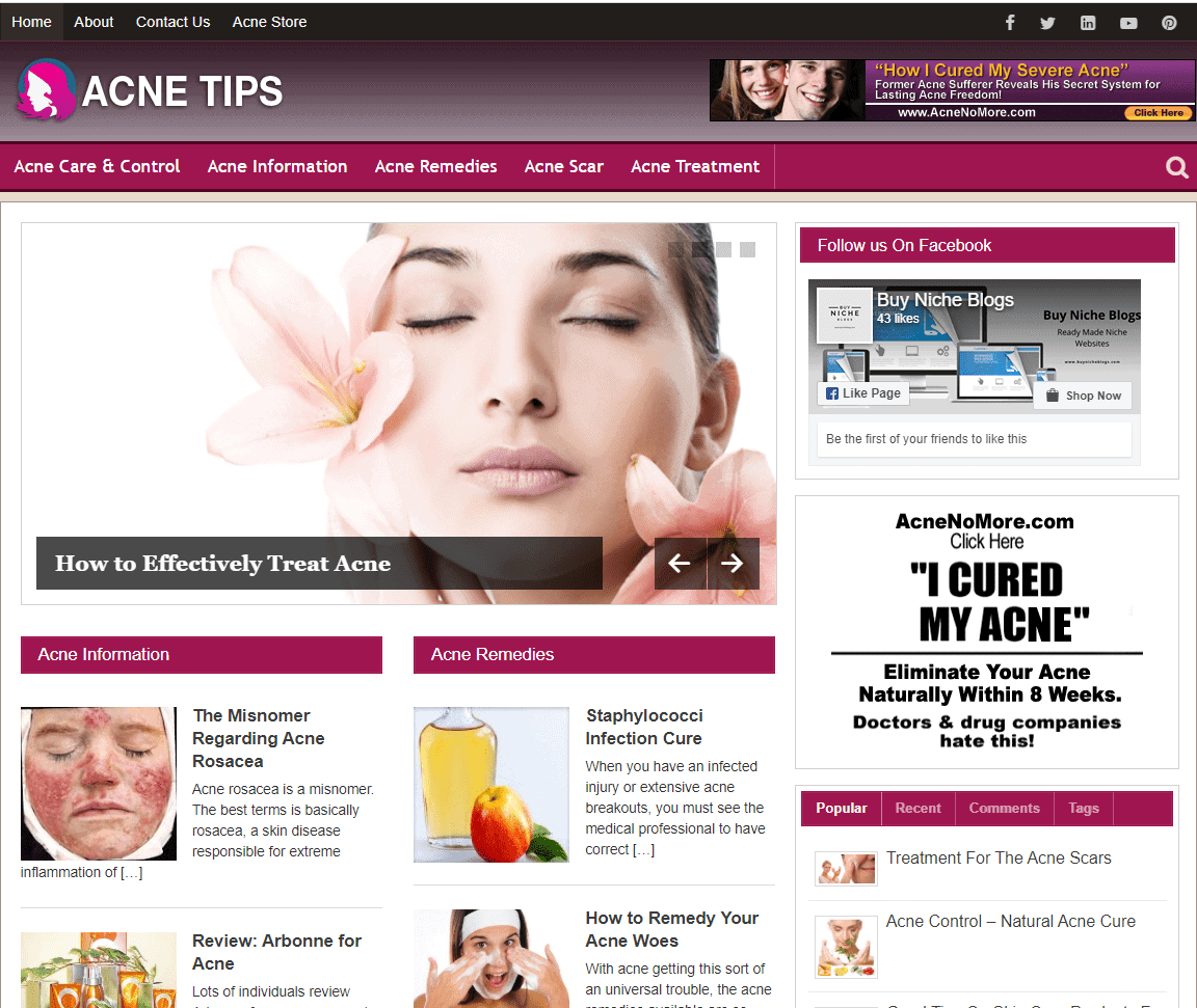 Acne Tips PLR Niche Blog