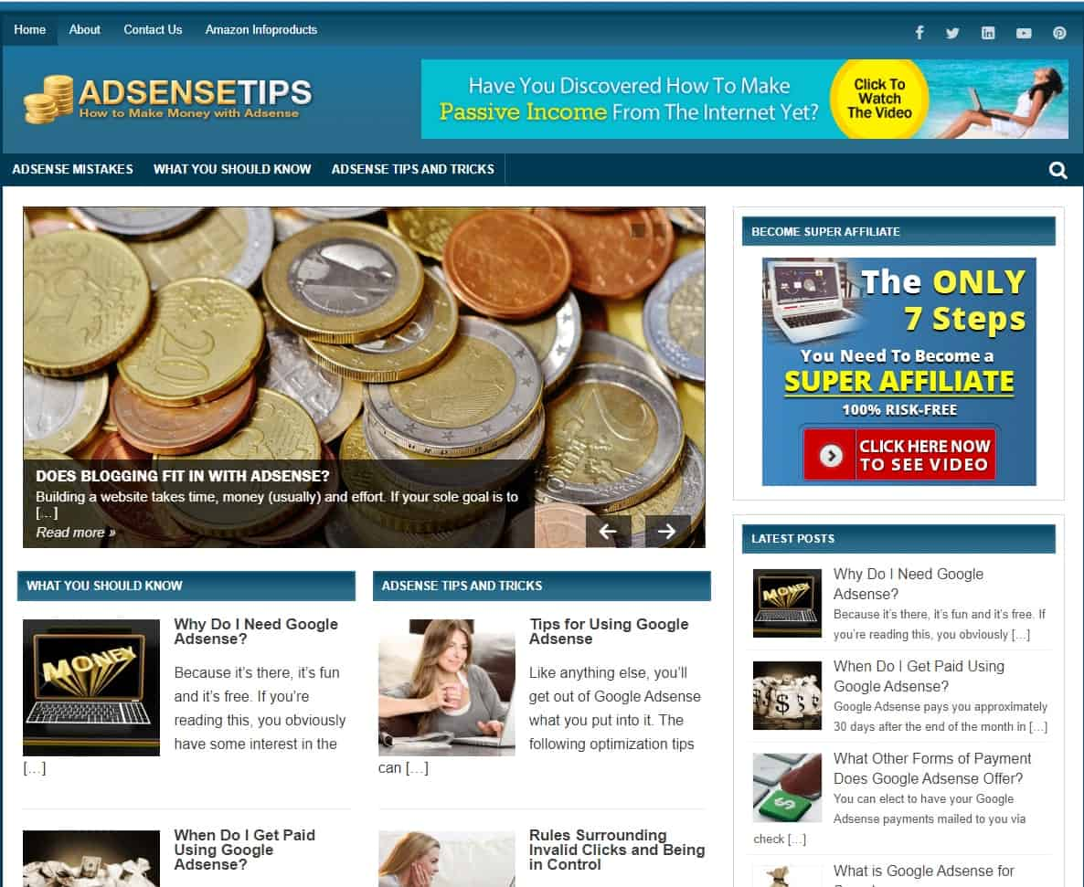 Adsense Tips PLR Niche Blog
