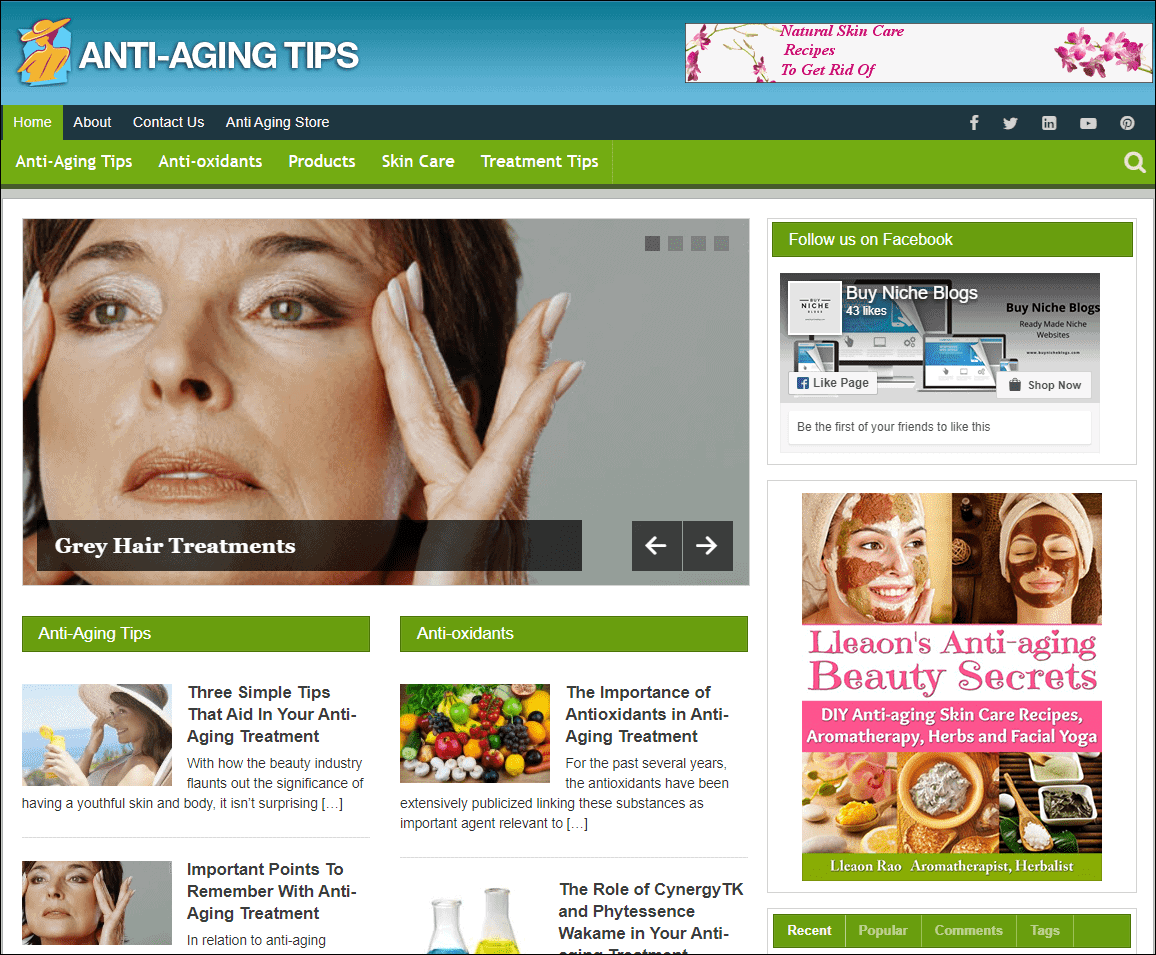 Anti Aging Wordpress PLR Niche Site