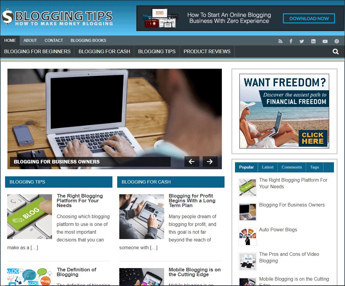 Make Money Blogging PLR Niche Site