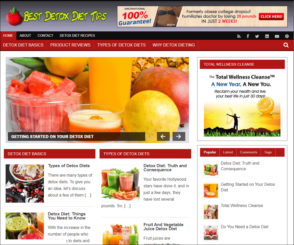 Body Detox Wordpress PLR Niche Site