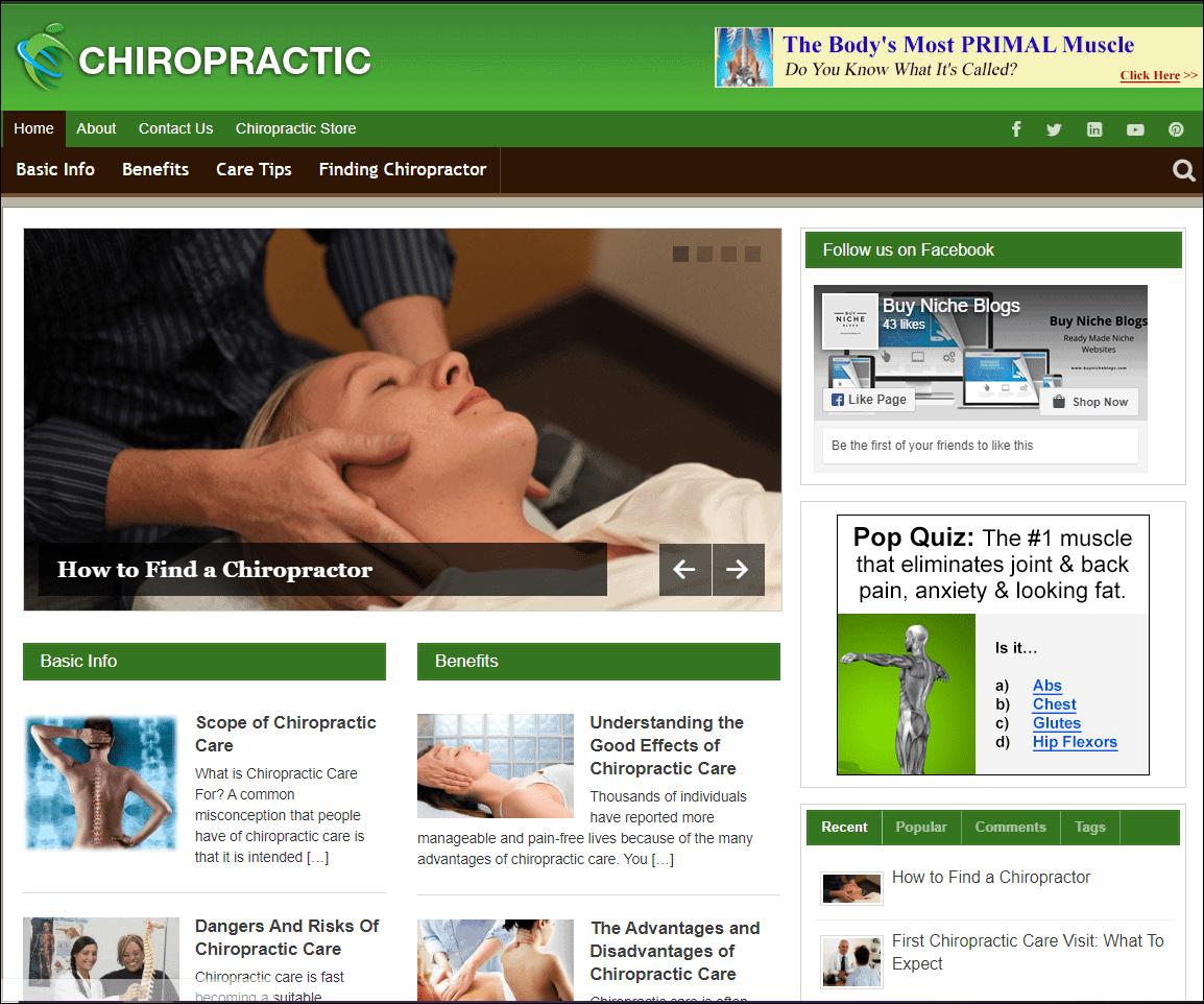 Chiropractic Wordpress PLR Niche Site