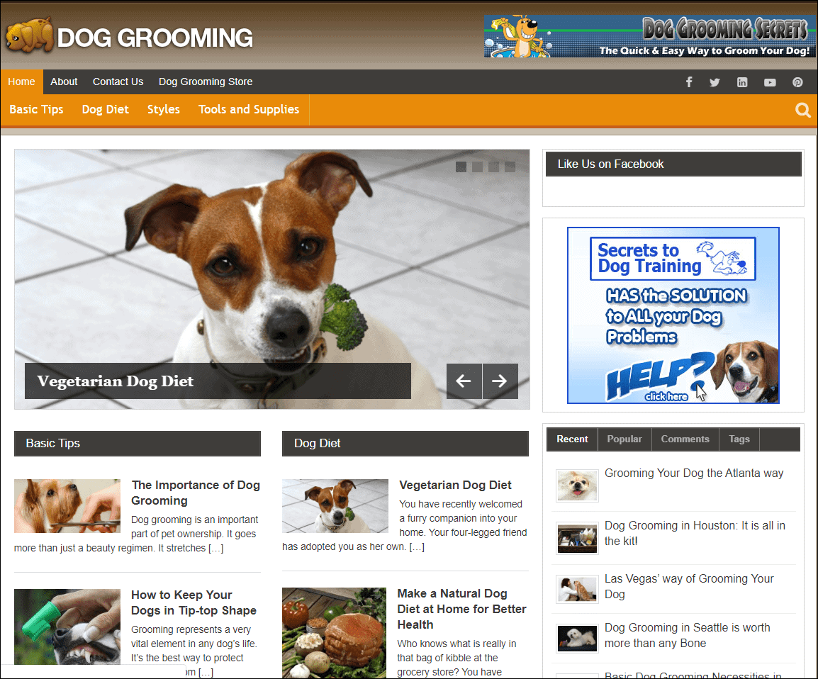 Dog Grooming Wordpress PLR Niche Blog
