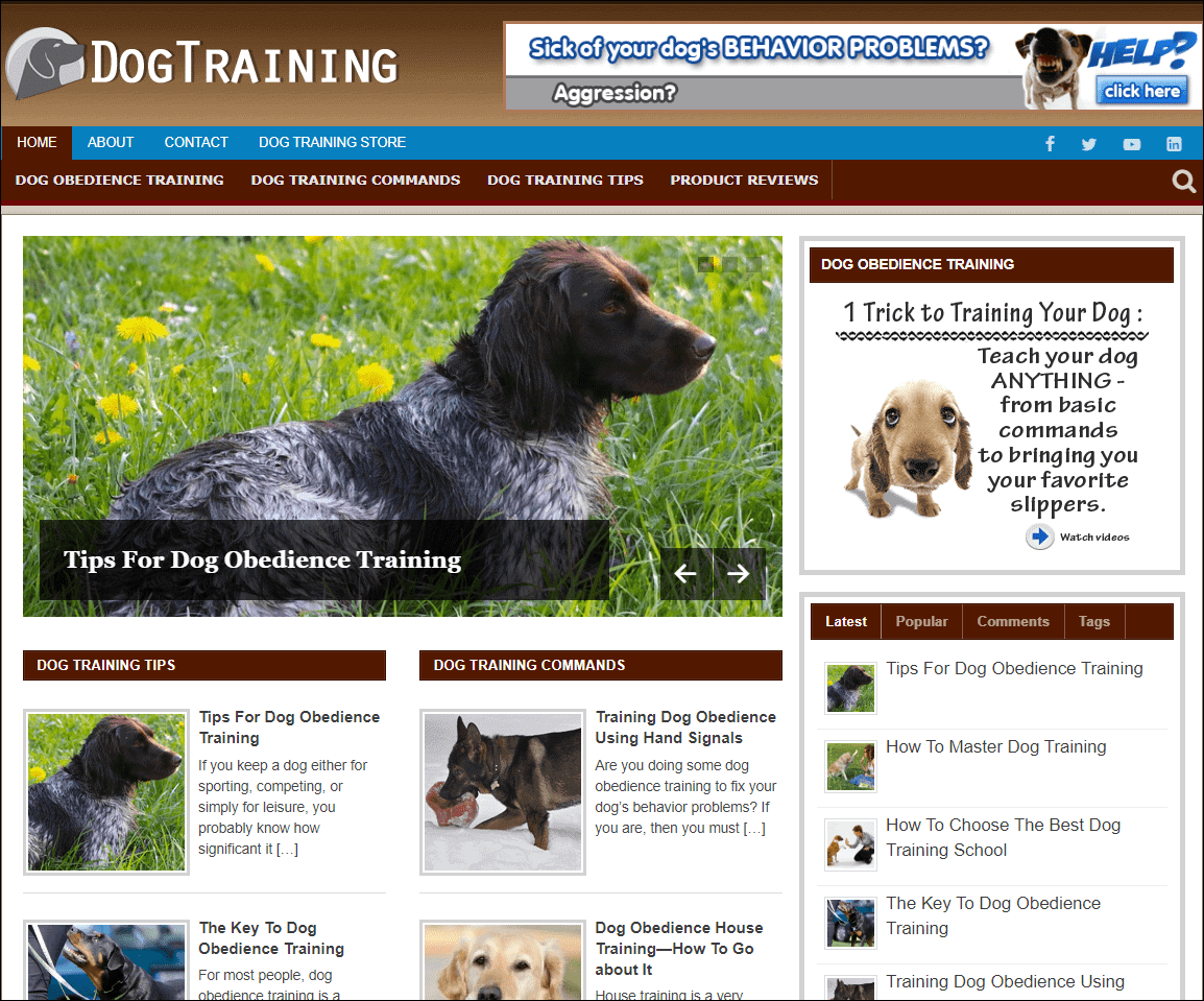 Dog Training Wordpress PLR Niche Blog
