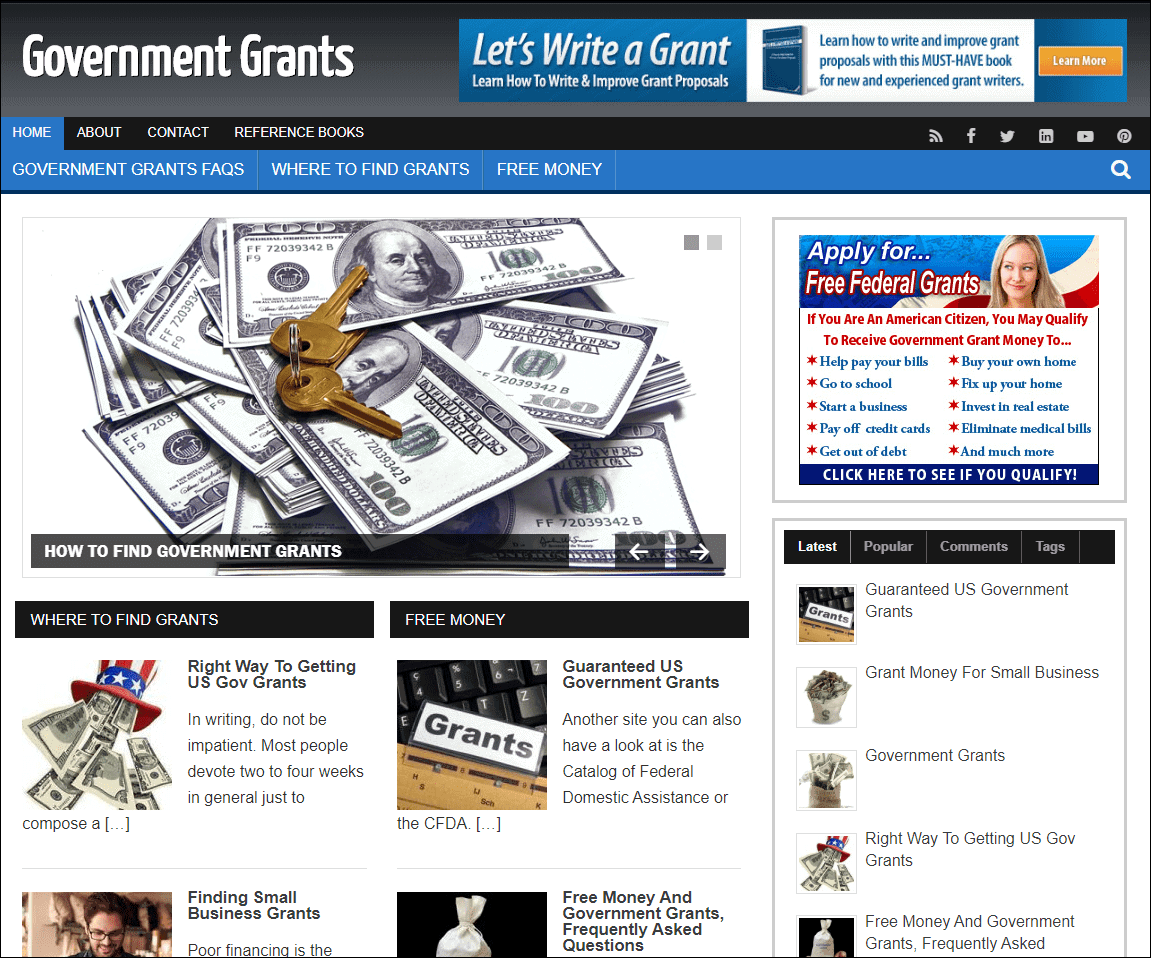Government Grants Wordpress PLR Niche Blog