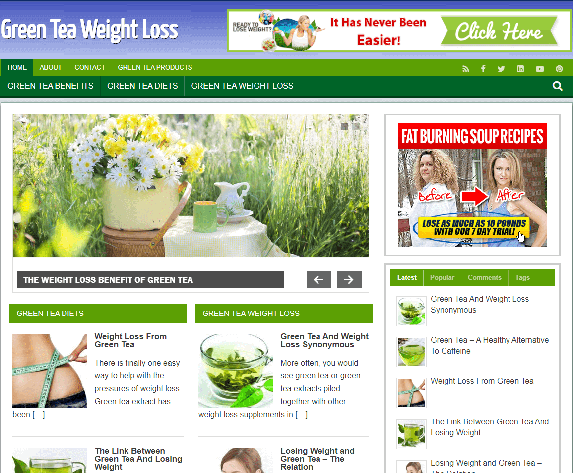 Green Tea Weight Loss Turnkey PLR Niche Blog