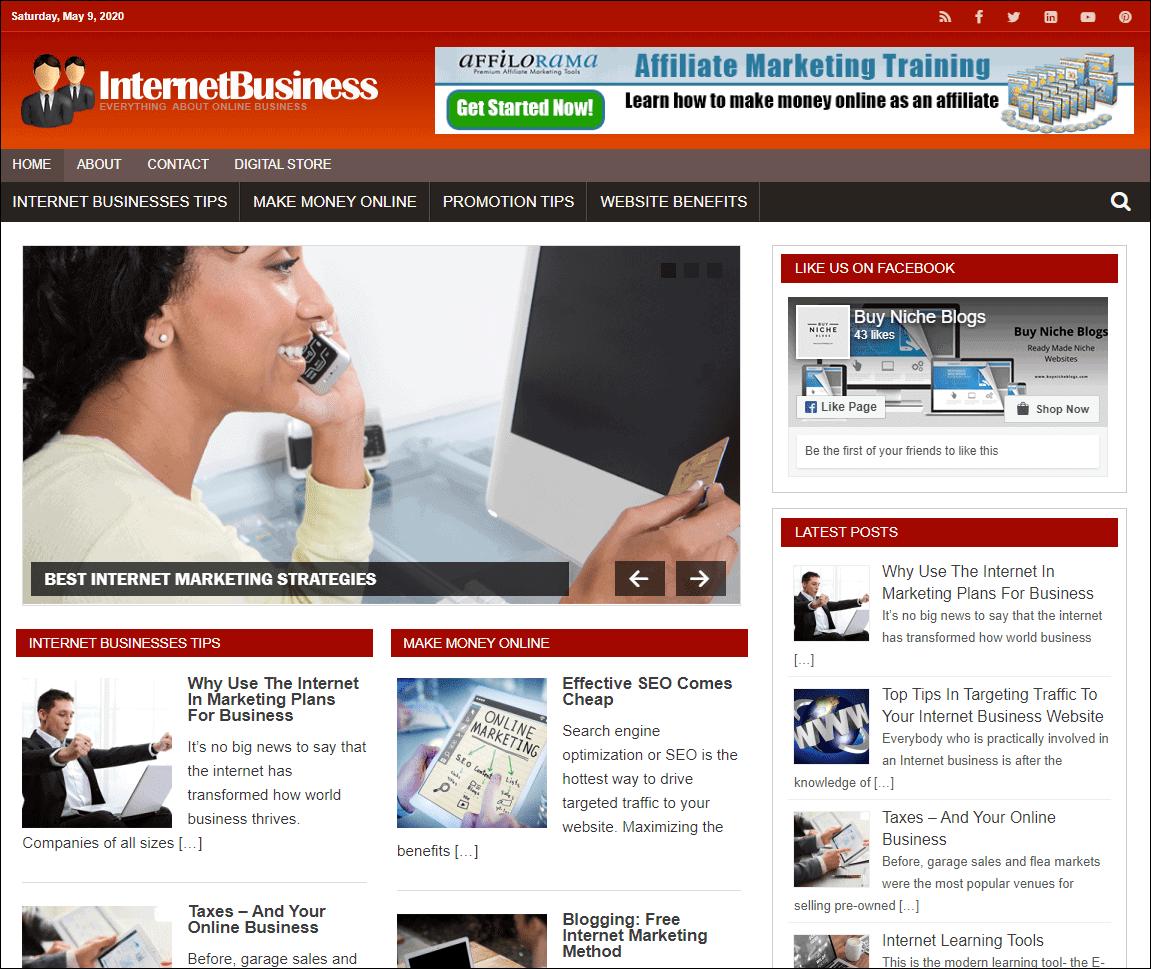 Internet Business Ready Made Niche Blog
