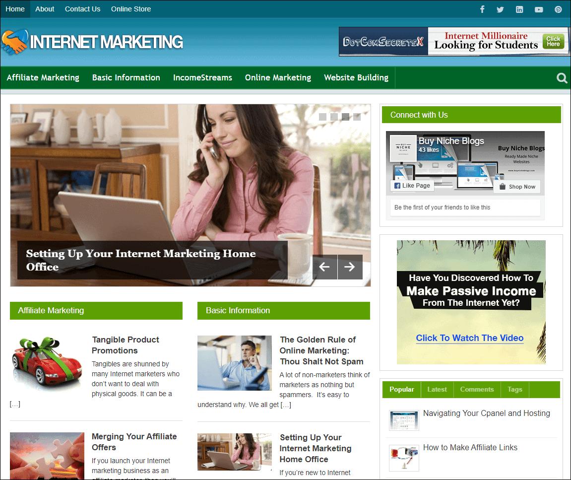 Internet Marketing PLR Niche Website