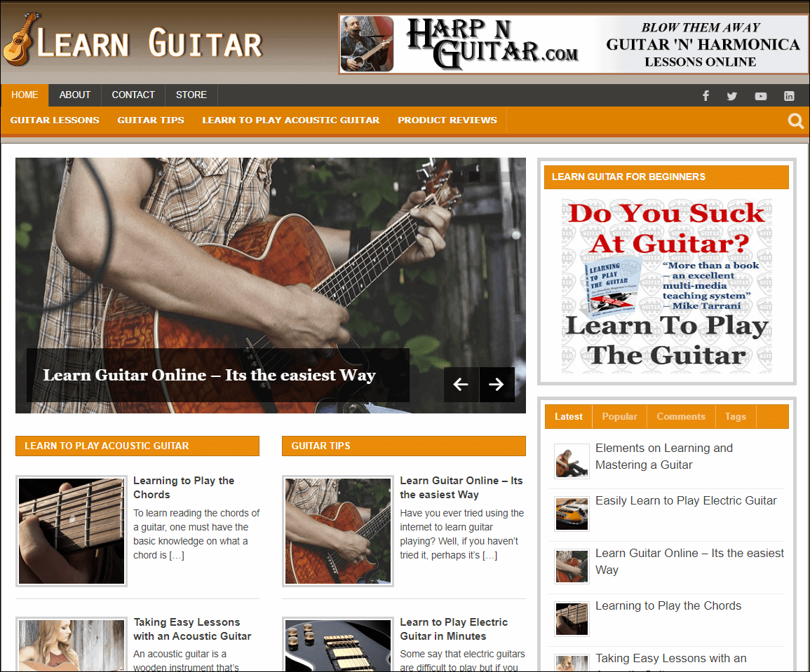 Learn Guitar PLR Niche Blog