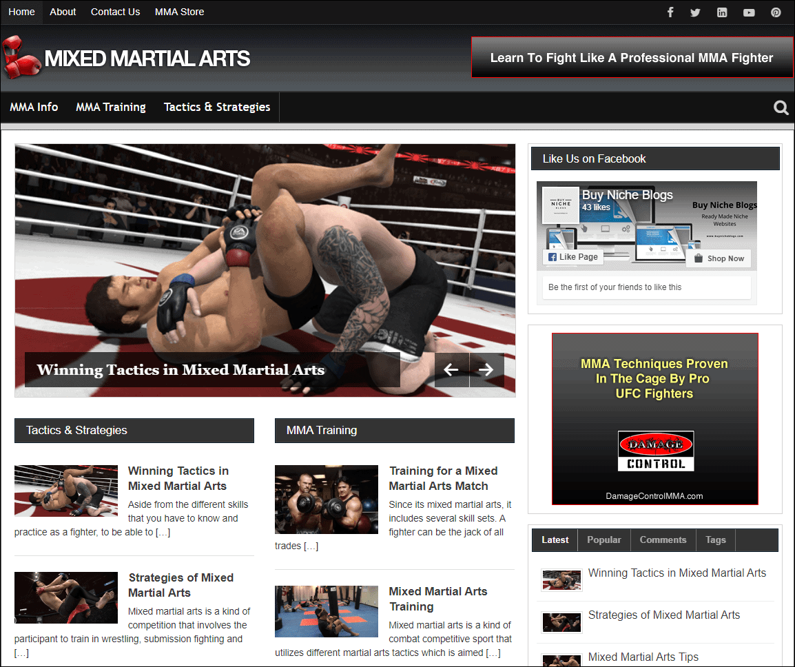 Mixed Martial Arts PLR Niche Blog