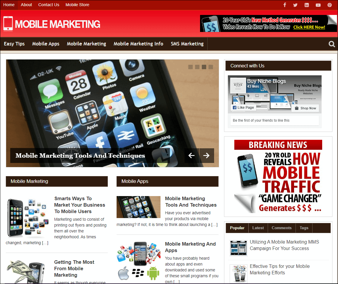 Mobile Marketing Turnkey Niche Website