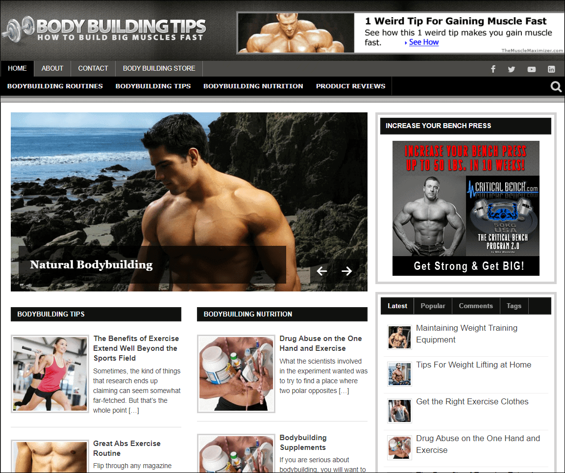 Body Building PLR Niche Blog