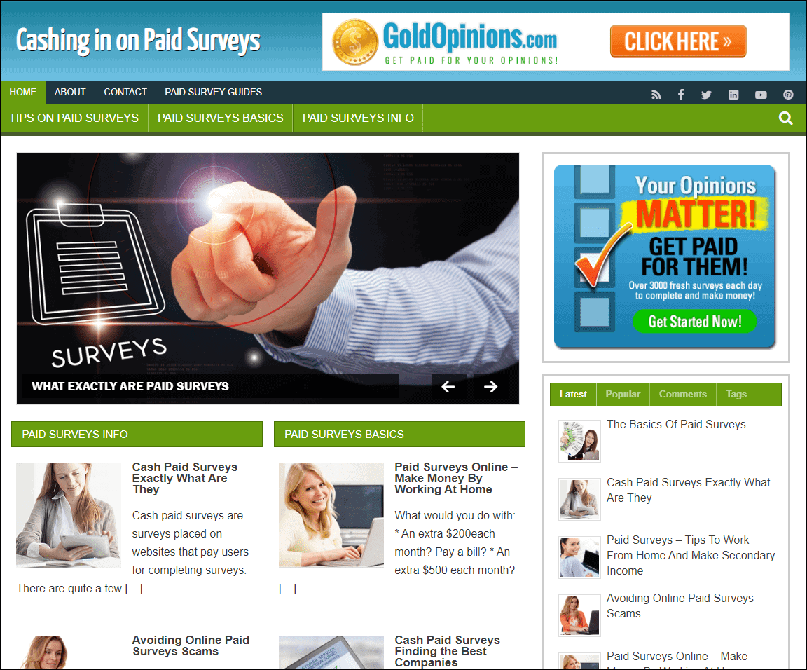Paid Surveys Niche Turnkey Blog
