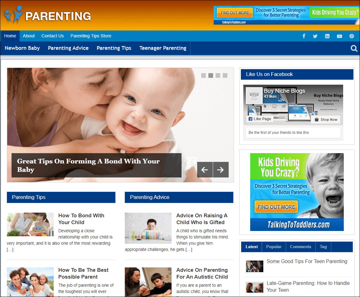 Parenting Niche PLR Website