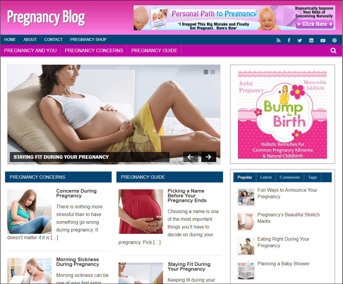 Pregnancy Niche Wordpress Blog