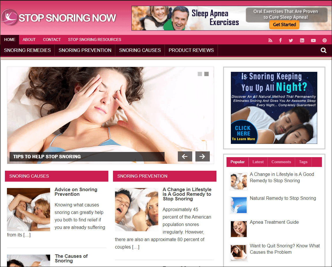 Stop Snoring Niche Ready Made Blog