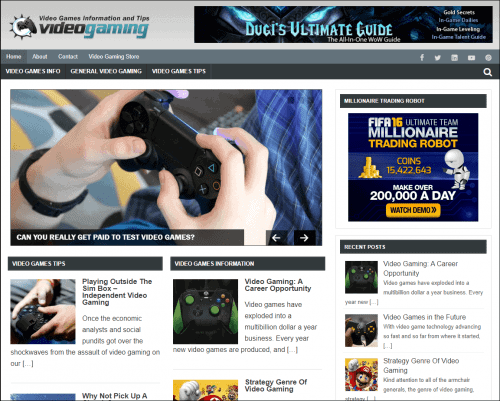 Video Gaming Niche Site