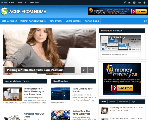 Work from Home PLR Blogs
