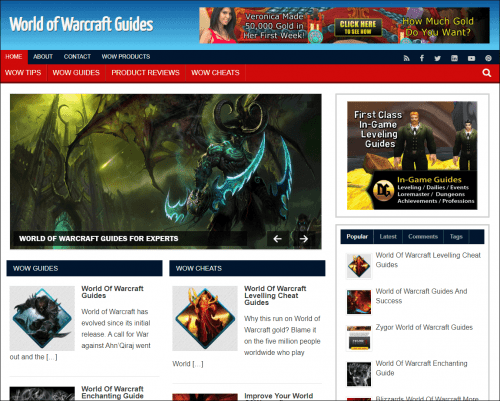 World of Warcraft Niche PLR Blog