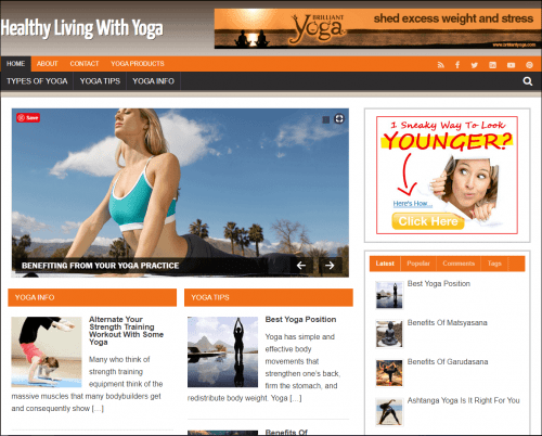 Yoga Niche PLR WordPress Site