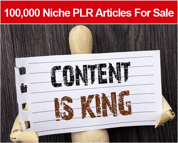 100,000 Niche PLR Articles For Sale